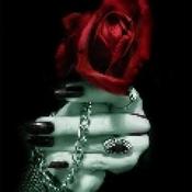 rosenland